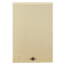 Panneau d'accès pour coffret CIBE® - Sigle Eclair